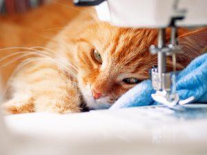 Upscale Pet Products Cat Beds